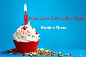 Alles Gute Zum Geburtstag Sophie Rosa bilder 300x200 - Alles Gute Zum Geburtstag Sophie Rosa bilder