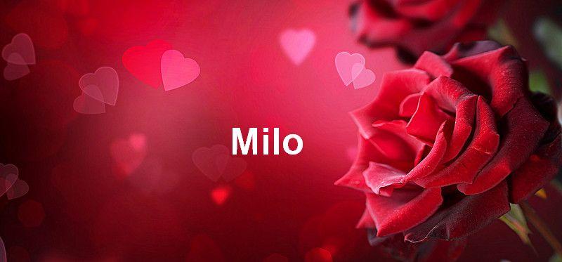 Bilder mit namen Milo - Bilder mit namen Milo