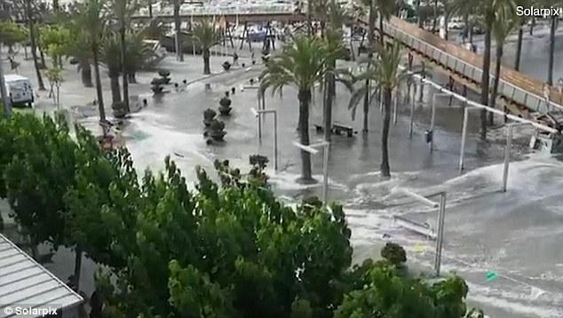 tsunami mallorca 3 - Tsunami mallorca bilder