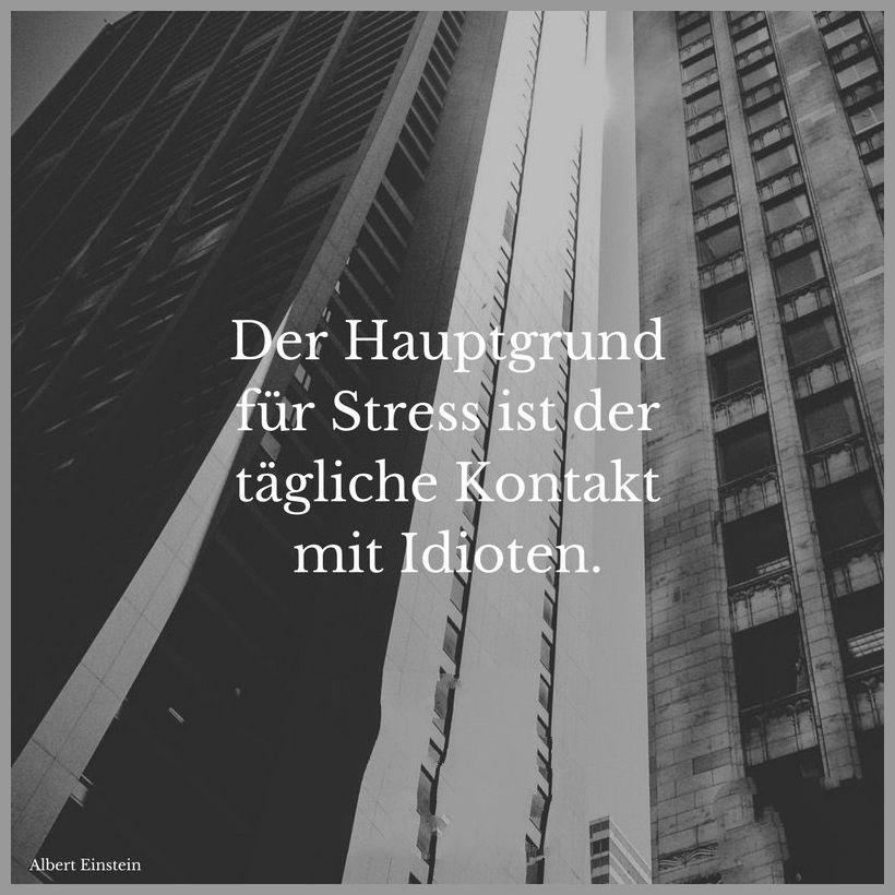 Der hauptgrund fuer stress ist der taegliche kontakt mit idioten - Der hauptgrund fuer stress ist der taegliche kontakt mit idioten