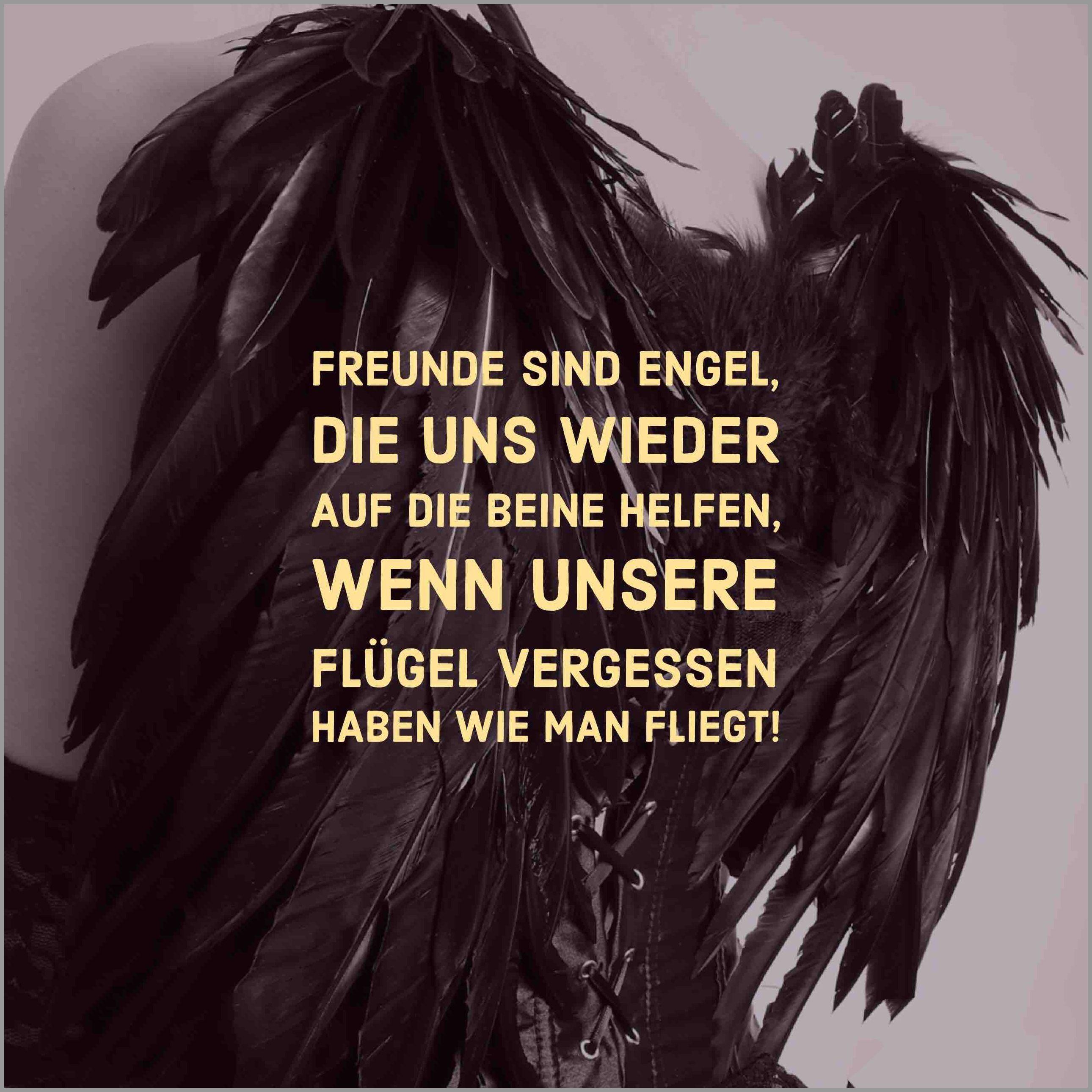 Freunde sind engel die uns wieder auf die beine helfen wenn unsere fluegel vergessen haben wie man fliegt - Freunde sind engel die uns wieder auf die beine helfen wenn unsere fluegel vergessen haben wie man fliegt