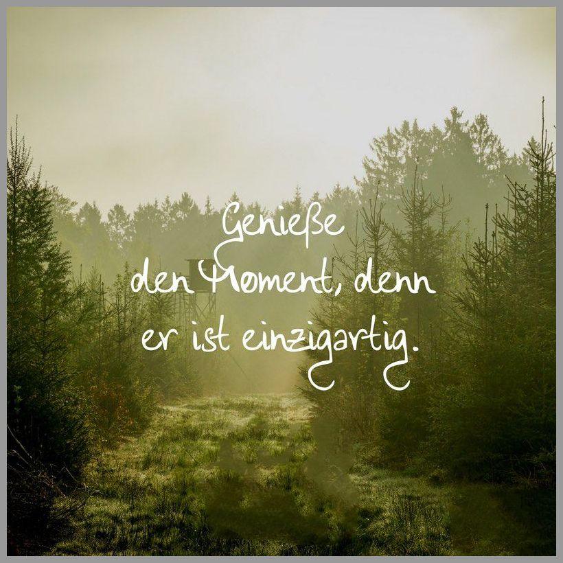 Geniesse den moment denn er ist einzigartig - Geniesse den moment denn er ist einzigartig