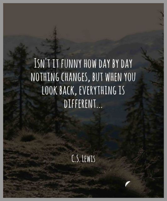Isn t it funny how day by day nothing changes but when you look back everything is different - Isn t it funny how day by day nothing changes but when you look back everything is different