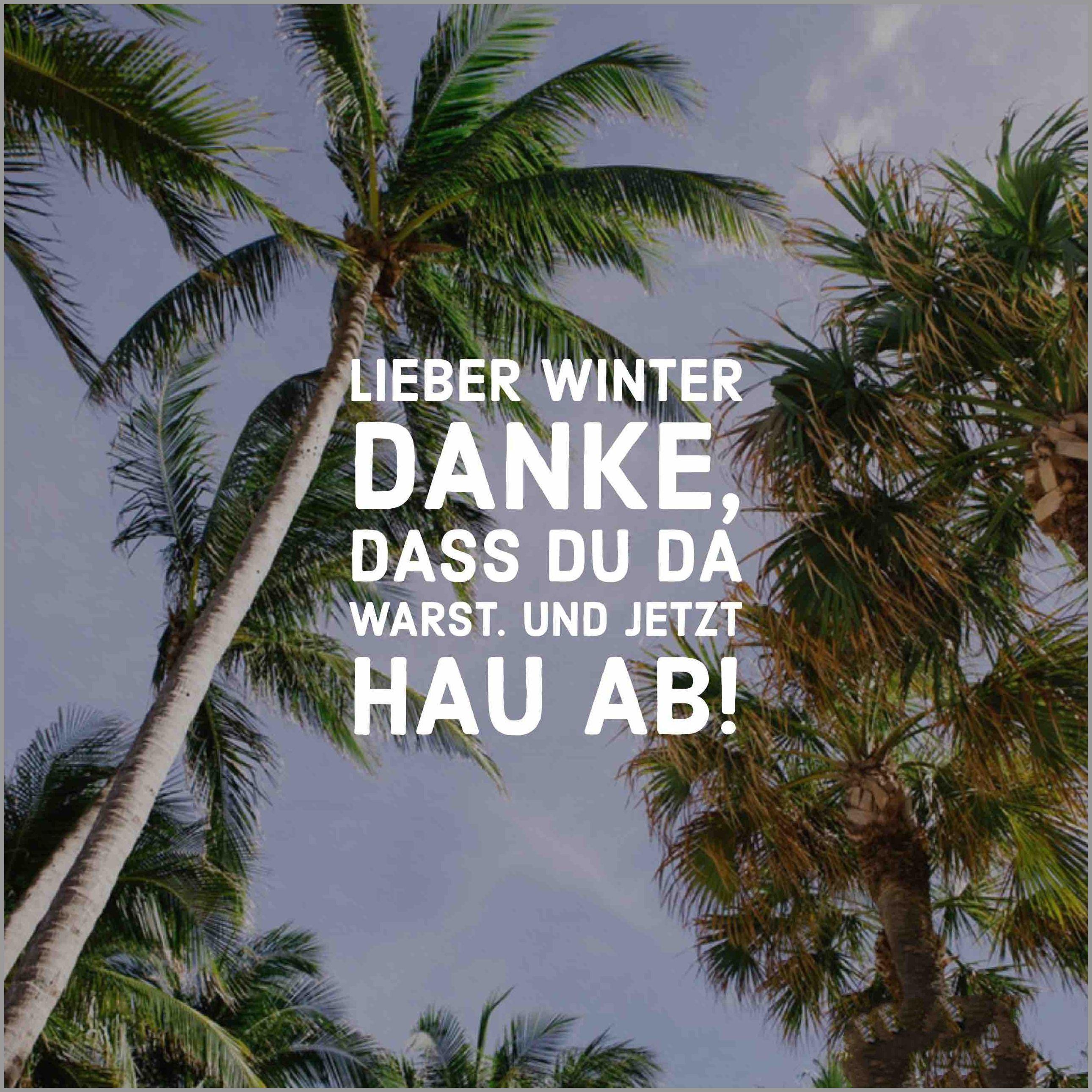 Lieber winter danke dass du da warst und jetzt hau ab - Lieber winter danke dass du da warst und jetzt hau ab
