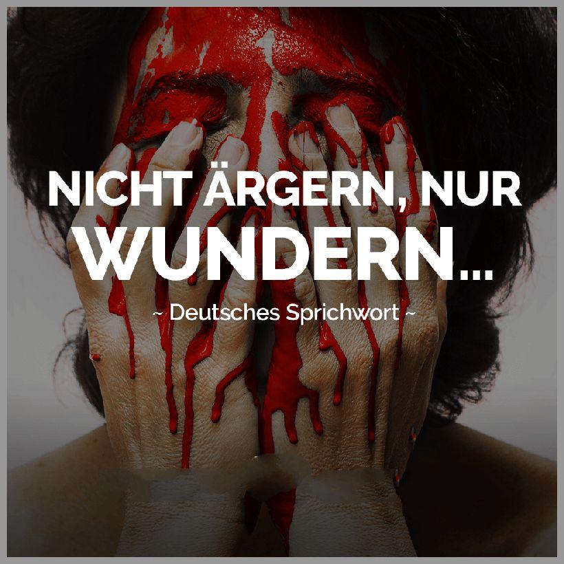 Nicht aergern nur wundern deutsches sprichwort - Nicht aergern nur wundern deutsches sprichwort