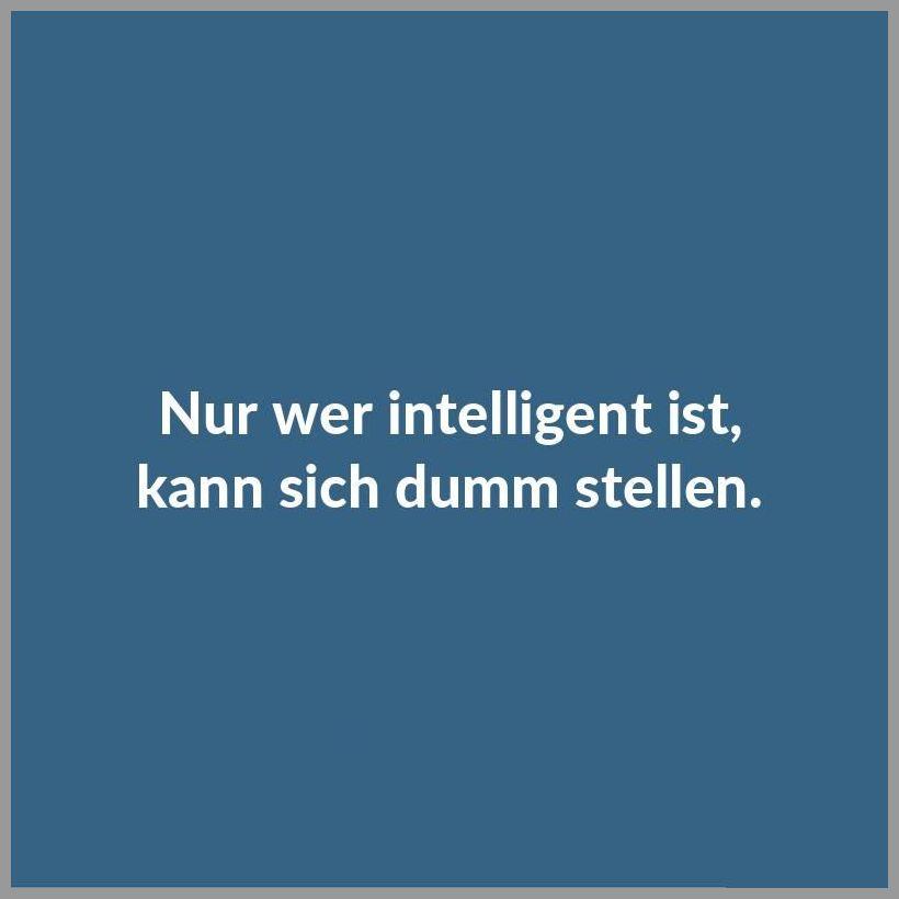 Nur wer intelligent ist kann sich dumm stellen - Nur wer intelligent ist kann sich dumm stellen