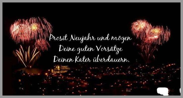 Prosit neujahr und moegen deine guten vorsaetze deinen kater ueberdauern - Prosit neujahr und moegen deine guten vorsaetze deinen kater ueberdauern