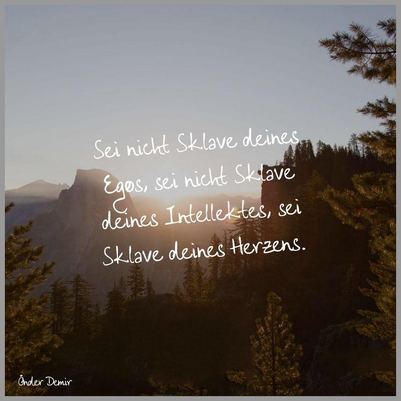 Sei nicht sklave deines egos sei nicht sklave deines intellektes sei sklave deines herzens - Sei nicht sklave deines egos sei nicht sklave deines intellektes sei sklave deines herzens
