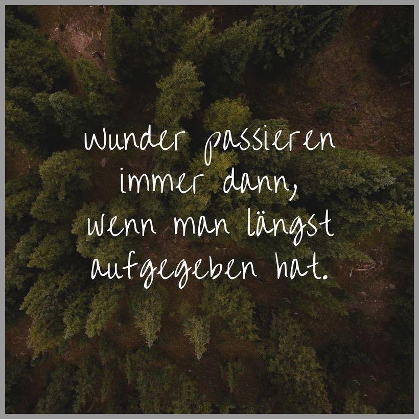 Wunder passieren immer dann wenn man laengst aufgegeben hat - Wunder passieren immer dann wenn man laengst aufgegeben hat