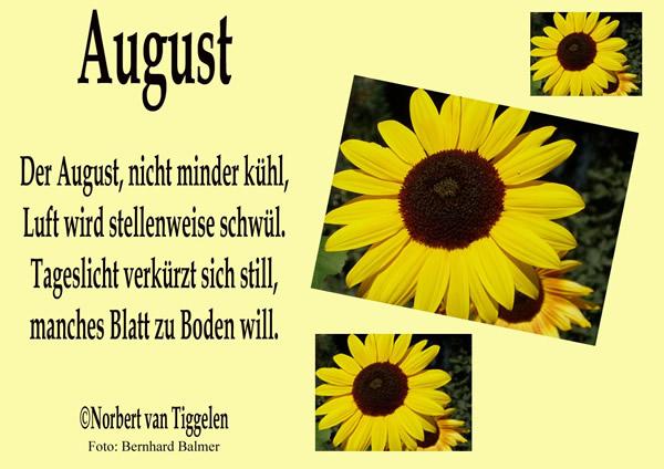 willkommen august bilder 4 - Willkommen august bilder