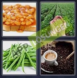 4 bilder 1 wort level 100 lösung BOHNEN - 4 bilder 1 wort level 100 lösung BOHNEN