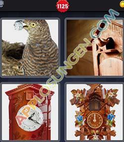 4 bilder 1 wort level 1125 lösung KUCKUCK - 4 bilder 1 wort level 1125 lösung KUCKUCK