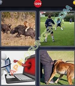 4 bilder 1 wort level 1209 lösung ANGRIFF - 4 bilder 1 wort level 1209 lösung ANGRIFF