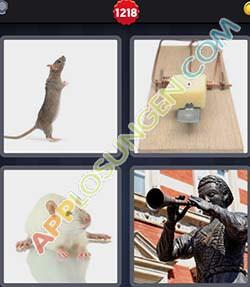 4 bilder 1 wort level 1218 lösung RATTE - 4 bilder 1 wort level 1218 lösung RATTE