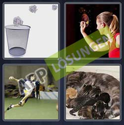 4 bilder 1 wort level 124 lösung WURF - 4 bilder 1 wort level 124 lösung WURF