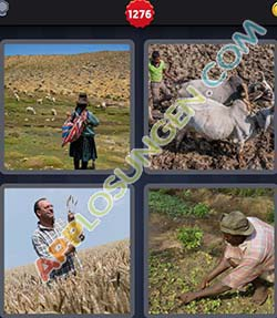 4 bilder 1 wort level 1276 lösung FARMER - 4 bilder 1 wort level 1276 lösung FARMER