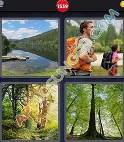 4 bilder 1 wort level 1539 lösung WALD - 4 bilder 1 wort level 1539 lösung WALD