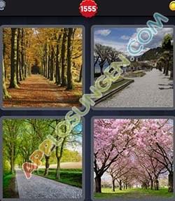 4 bilder 1 wort level 1555 lösung ALLEE - 4 bilder 1 wort level 1555 lösung ALLEE