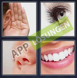 4 bilder 1 wort level 170 lösung GESICHT - 4 bilder 1 wort level 170 lösung GESICHT