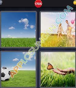 4 bilder 1 wort level 1705 lösung GRAS - 4 bilder 1 wort level 1705 lösung GRAS