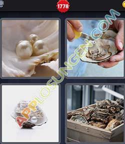 4 bilder 1 wort level 1778 lösung AUSTER - 4 bilder 1 wort level 1778 lösung AUSTER