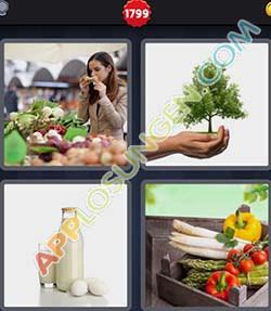 4 bilder 1 wort level 1799 lösung BIO - 4 bilder 1 wort level 1799 lösung BIO