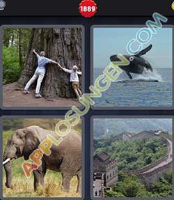 4 bilder 1 wort level 1889 lösung ENORM - 4 bilder 1 wort level 1889 lösung ENORM