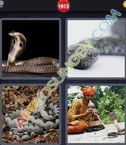 4 bilder 1 wort level 1913 lösung NATTER - 4 bilder 1 wort level 1913 lösung NATTER