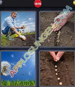 4 bilder 1 wort level 1978 lösung SAEN - 4 bilder 1 wort level 1978 lösung SAEN