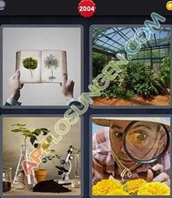 4 bilder 1 wort level 2004 lösung BOTANIK - 4 bilder 1 wort level 2004 lösung BOTANIK