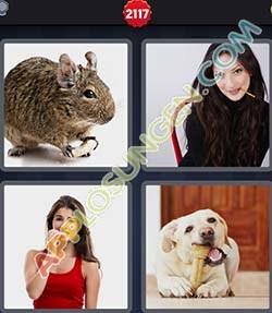 4 bilder 1 wort level 2117 lösung KNABBERN - 4 bilder 1 wort level 2117 lösung KNABBERN