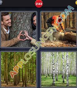 4 bilder 1 wort level 2143 lösung BAUMSTAMM - 4 bilder 1 wort level 2143 lösung BAUMSTAMM