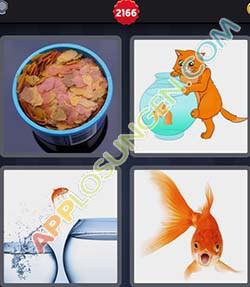 4 bilder 1 wort level 2166 lösung GOLDFISCH - 4 bilder 1 wort level 2166 lösung GOLDFISCH
