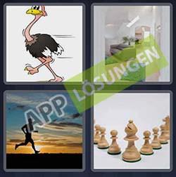 4 bilder 1 wort level 225 lösung LAUFER - 4 bilder 1 wort level 225 lösung LAUFER