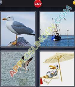 4 bilder 1 wort level 2276 lösung MOWE - 4 bilder 1 wort level 2276 lösung MOWE
