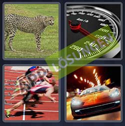4 bilder 1 wort level 232 lösung SCHNELL - 4 bilder 1 wort level 232 lösung SCHNELL