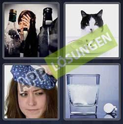 4 bilder 1 wort level 233 lösung KATER - 4 bilder 1 wort level 233 lösung KATER