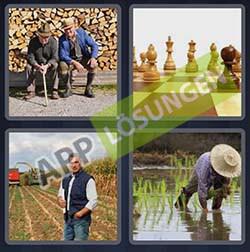 4 bilder 1 wort level 252 lösung BAUER - 4 bilder 1 wort level 252 lösung BAUER