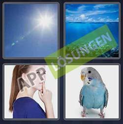 4 bilder 1 wort level 297 lösung BLAU - 4 bilder 1 wort level 297 lösung BLAU