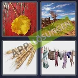 4 bilder 1 wort level 305 lösung TROCKEN - 4 bilder 1 wort level 305 lösung TROCKEN