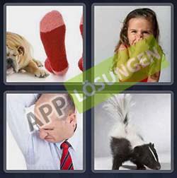4 bilder 1 wort level 335 lösung STINKEN - 4 bilder 1 wort level 335 lösung STINKEN