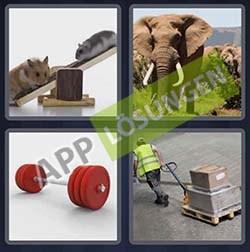 4 bilder 1 wort level 336 lösung SCHWER - 4 bilder 1 wort level 336 lösung SCHWER