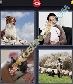 4 bilder 1 wort level 439 lösung HUTEN - 4 bilder 1 wort level 439 lösung HUTEN