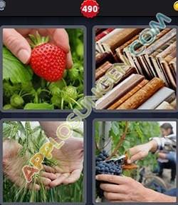 4 bilder 1 wort level 490 lösung LESE - 4 bilder 1 wort level 490 lösung LESE