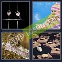 4 bilder 1 wort level 60 lösung GEFANGEN - 4 bilder 1 wort level 60 lösung GEFANGEN