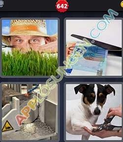 4 bilder 1 wort level 642 lösung KURZEN - 4 bilder 1 wort level 642 lösung KURZEN
