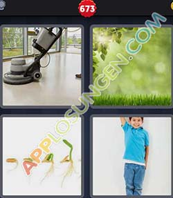 4 bilder 1 wort level 673 lösung WACHSEN - 4 bilder 1 wort level 673 lösung WACHSEN