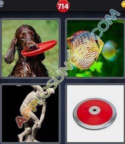 4 bilder 1 wort level 714 lösung DISKUS - 4 bilder 1 wort level 714 lösung DISKUS