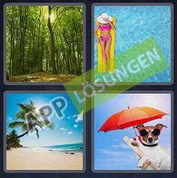 4 bilder 1 wort level 77 lösung SOMMER - 4 bilder 1 wort level 77 lösung SOMMER