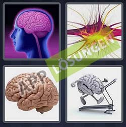 4 bilder 1 wort level 79 lösung GEHIRN - 4 bilder 1 wort level 79 lösung GEHIRN